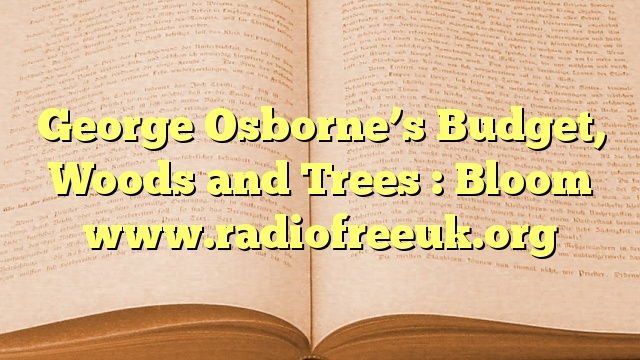 George Osborne's Budget, Woods and Trees : Bloom